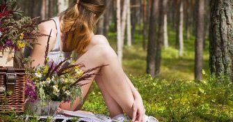 picknick mit Naturehome
