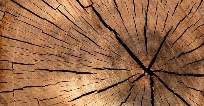 Natürliches Material Holz