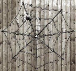 Spinnennetz als Deko