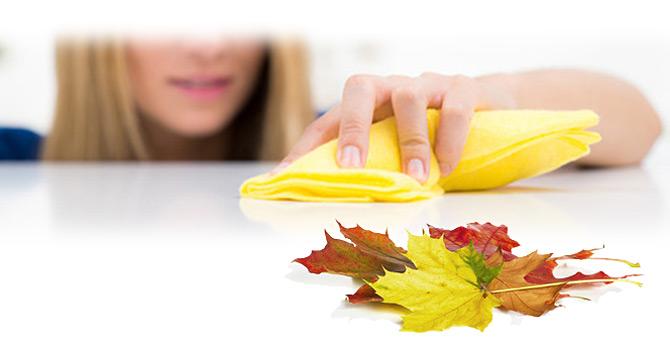 Frau mit Putztuch Herbst